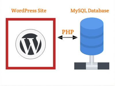 WordPress PHP MySQL