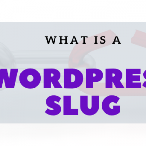 What is a WordPress slug