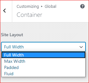 Astra theme container layouts in pro version