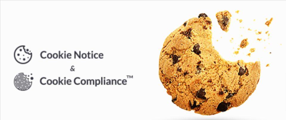 Cookie Notice Essential WordPress Plugin