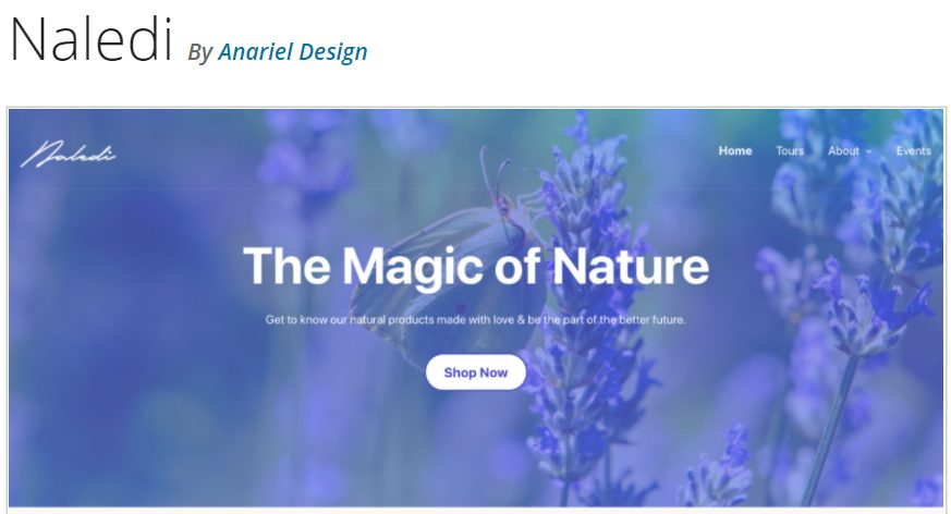 Naledi WordPress full site editing theme