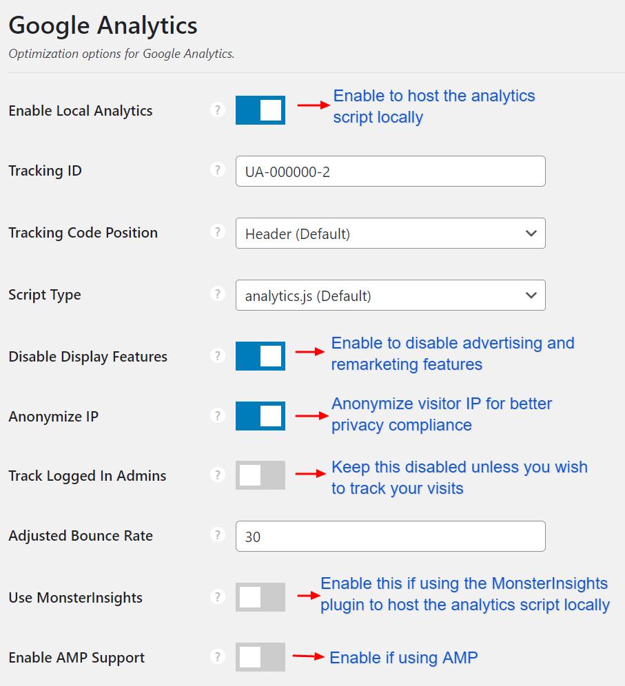 Perfmatters Google Analytics Settings