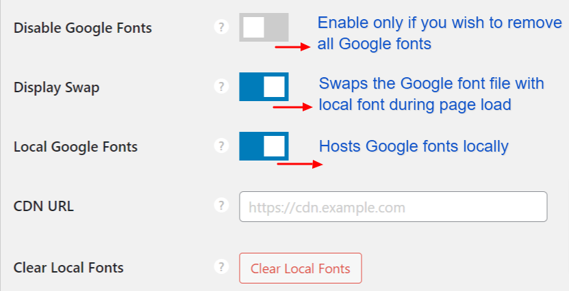 Perfmatters font settings