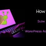 Slow WordPress Admin Dashboard